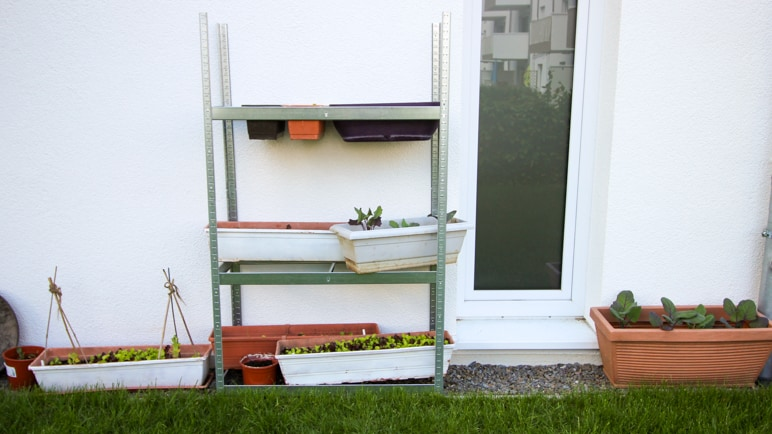Ein ausrangiertes Reifenregal für vertikales Gärtnern